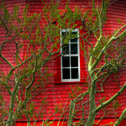 Red_house_2_by_jfdupuis_card