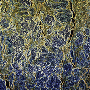 Lichen_patterned1_card