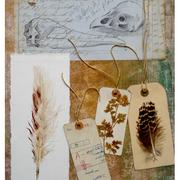 Foreign_species_1_mixed_media_-_print__pencil_and_collage_card