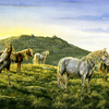 Dawn_light_-_ponies_on_bodmin_moor_thumb