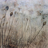 March_meadow_thumb