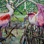 Nancy_jacey_spoonbills_pencil_card