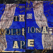 The_evolutionary_ape_1_card