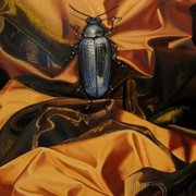 Meg_dwyer_insect_on_gold_art_card