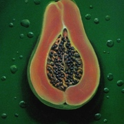 Meg_dwyer_art_papaya_card
