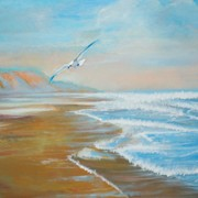Seagull_and_seascape_card