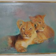 Lion_cubs_card