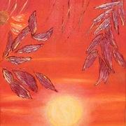 Suoni_del_tramonto_card