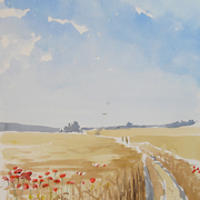 Poppies_in_cornfield_card
