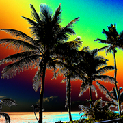 Florida_sunset_popart_low_card