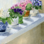 Violets_study_card