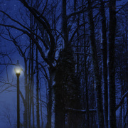 Night_lights_card