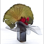 Ikebana-147_card
