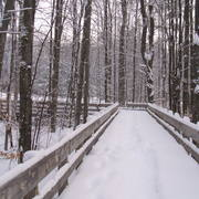 Winter_bridge_card