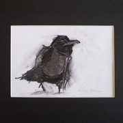 Grumpy_crow_card