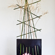 Ikebana-155_card