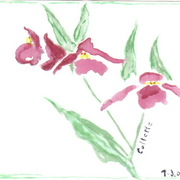 Watercolor_azalea_crop_card