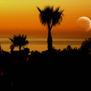 Encinitas_sunset___oceanap_card