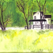 House___landscaping_forest_card