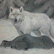 White-wolf-sketch_card