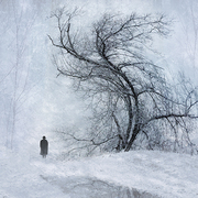 Winter_walk_card