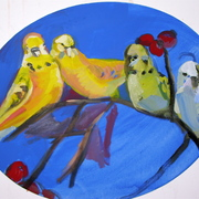 Birds_parekeets_card