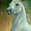 Horse_by_adanethiel_thumb