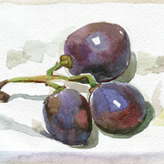 2005-three-grapes4mb_card