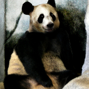 Panda_water_color_card