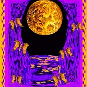 Moon-butterflies-golden-jas_card