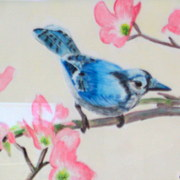 Blue_jay_card