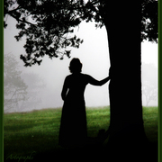 Sunday_morning_fog_card