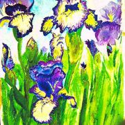 Irises_card