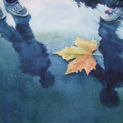Autunno__acq__40x50_card