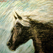 Flasch_horse_cm_55x70_card