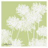 Green-allium-revised-_thumb