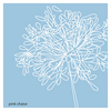Single-blue-allium-revised_thumb