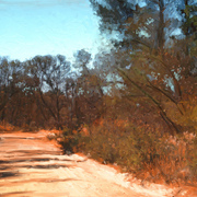 Dirt_road_card