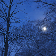 Snowstorm_moonrise_copy_card