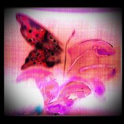 Pink_abstract_butterfly_and_flower_art_card