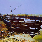 _051__la_albufera_card