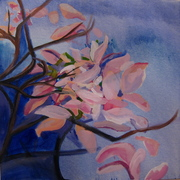 Finished_magnolia_petals_in_the_evening_card