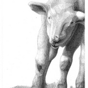 Artbreak-lamb_card
