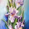 Who_loves_irises_thumb