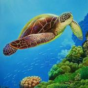 Turtle_underwater-2_card
