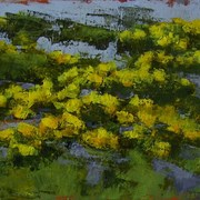 Marsh_marigolds_card