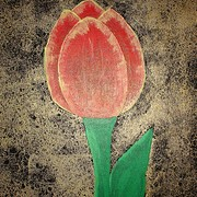 Tulip_card