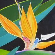 Birdofparadise1061_card