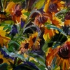 Abstract_sunflowers_thumb