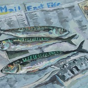 Efm_mackerel2_card